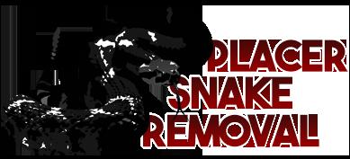 Placer Snake Removal | Safe, Humane Rattlesnake Removal